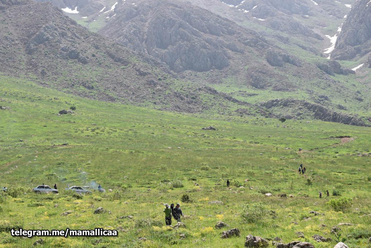 کردستان زیباست