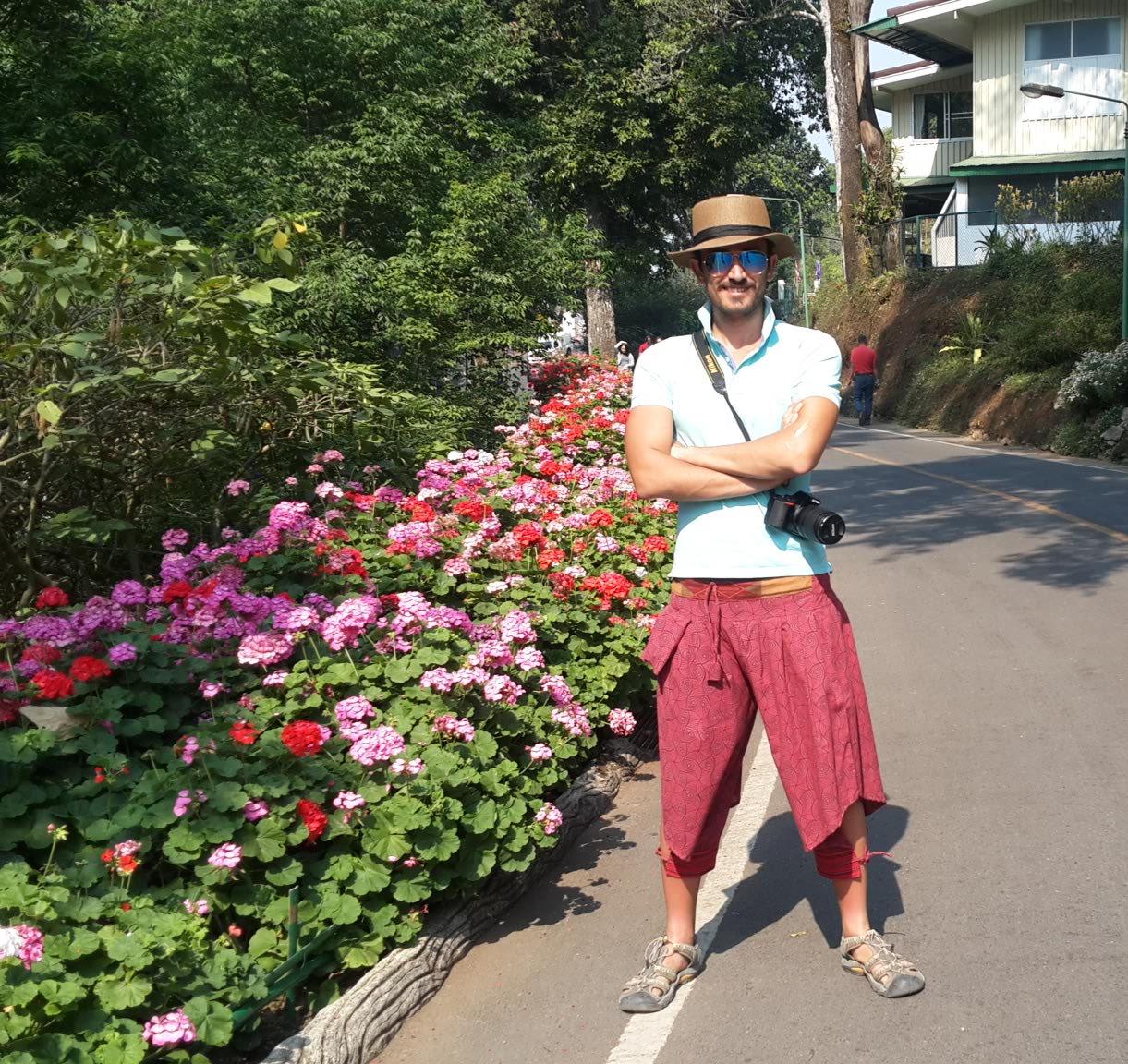 مملیکا در چیانگ مای تایلند